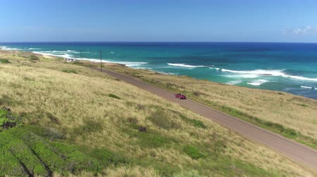 Оаху : AERIAL: Luxury red convertible car driving on picturesque coastal road along beautiful sandy beaches in lush Hawaii island. Happy young couple on summer vacation traveling at the seaside Стоковые видеозаписи