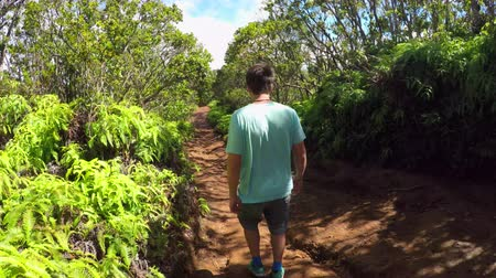 hawaje : CLOSE UP: Young man walking along the empty dirt path leading through lush jungle rainforest in Hawaii mountains. Man on vacation hiking in beautiful nature