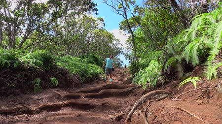 sırt çantasıyla : LOW ANGLE VIEW: Cheerful young man and woman walking along dirt path leading through lush jungle volcanic Hawaii. Sports couple on summer vacation hiking in Hawaiian rainforest on a muddy road Stok Video