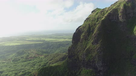 AERIAL: Flying past magnificent rocky mountain ridge high above lush acacia rainforest, revealing beautiful scenery on vast tropical acacia rainforest and volcanic landscape of archipelago of Kauai. Wideo