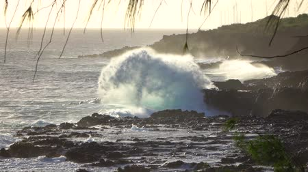 spraying : SLOW MOTION: Huge ocean waves crushing and splashing heavily into rough dark volcanic rocks on rough rocky shore in Hawaii island. Ocean mist rising up above the powerful restless sea at the coastline