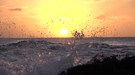 slapping : SLOW MOTION CLOSE UP: Big ocean waves smashing into rough rocky black shore at golden sunset on beautiful summer evening. Amazing never ending rippling sea illuminated by golden dawn sunlight