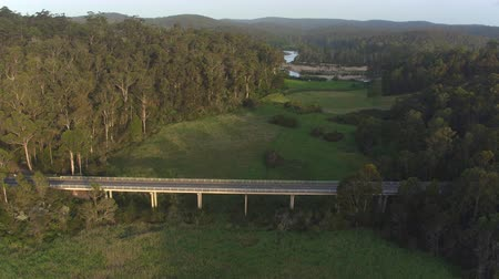 çimenli : AERIAL, MOVING FORWARD: Flying above highway bridge leading over vast green swamp land. Beautiful meadow clearing and river running through stunning eucalyptus forest in mystical Australian swamp.