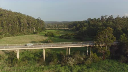 eukaliptus : AERIAL: White SUV car driving across bridge viaduct over green Australian swamp on beautiful sunny morning. Vast green grassy bog wetland in beautiful lush eucalyptus tree forest Wideo