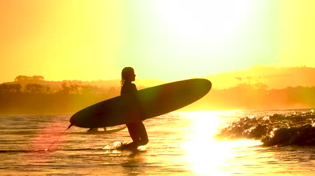 zátoka : SLOW MOTION: Unrecognizable blurred female carrying longboard surf and going into the ocean at amazing golden sunset. Surfer girl walking in shallow sea water on beautiful beach in summer evening