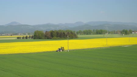 oleaginosa : AERIAL: Vast agricultural farmland under cultivation. Tractors working on farm field and driving on dusty rural road along oilseed rape field on sunny spring day with mighty mountains in background Stock Footage