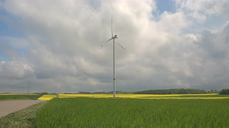 pervane : Big white modern windmill turbine rotating and converting wind power into energy, generating electricity. Yellow blooming turnip and young wheatgrass on big vast agricultural farmland field. Stok Video