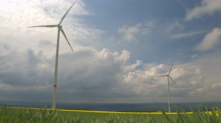 oleaginosa : Big white modern windmill turbine rotating and converting wind power into energy, generating electricity. Yellow blooming turnip and young wheatgrass on big vast agricultural farmland field. Stock Footage
