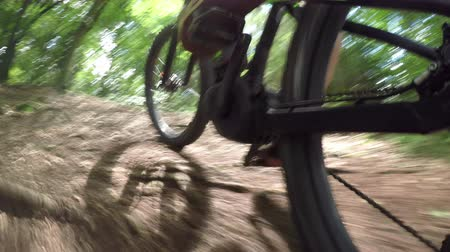 bisiklete binme : CLOSE UP: Unrecognizable downhill biker riding e-bike on dirt trail through the forest terrain. Freeride biker pedaling electric bicycle along the offroad track through green woods in sunny summer Stok Video