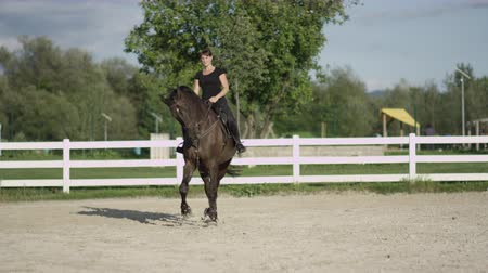 проходить : SLOW MOTION, CLOSE UP, DOF: Dark dressage horse riding sideways trotting haunches-in in big sandy manege. Female dressage rider and horse doing a lateral work traver element in outdoors riding arena