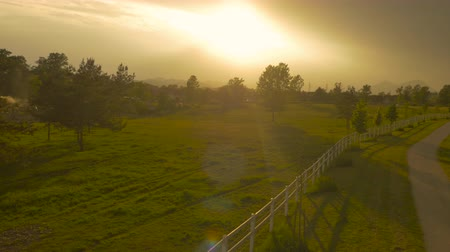 corral : AERIAL: Flying above winding road between white fences on beautiful horse ranch on sunny morning at golden sunrise. Stunning suburban plane scenery, meadow fields and lush trees at dramatic sunset Stock Footage