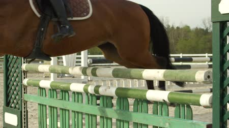 knocking : SLOW MOTION, CLOSE UP: Unrecognizable female rider practicing show jumping and making fault by knocking down obstacle pole. Mare cantering towards barrier, rail dropping down as horse kicks the fence