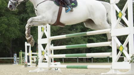 kısrak : SLOW MOTION, CLOSE UP: Beautiful grey horse jumping over fence and performing in competitive jumping event in outdoors sandy parkour riding arena. Unrecognizable person riding powerful gelding