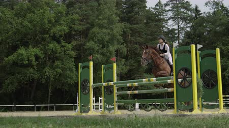 show off : SLOW MOTION, CLOSE UP: Beautiful chestnut horse jumping over fence and performing in competitive event in outdoors sandy parkour riding arena. Powerful gelding competing in horseback riding in manege