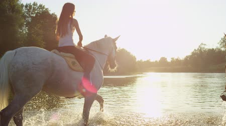 borrifar : SLOW MOTION, CLOSE UP: Two cheerful girlfriends horseback riding in wide river on magical golden light sunny summer day. Happy horses splashing waterdrops when walking in shallow water Stock Footage