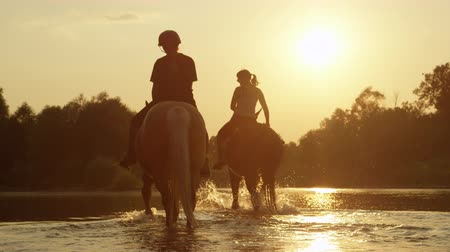 ferahlatıcı : SLOW MOTION CLOSE UP DOF: Two riders riding horses and walking into magical golden sunset along the rocky riverbank. Light and dark horse going for a ride in shallow river water at beautiful sunrise Stok Video