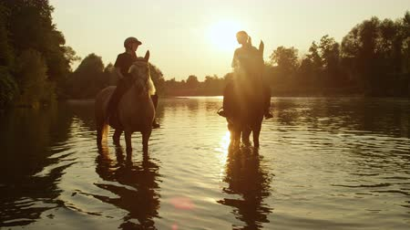 kısrak : SLOW MOTION CLOSE UP DOF: Two female riders riding horses at magical golden sunset along green overgrown riverbank. Palomino and dark brown horse standing and resting in refreshing river at sunrise Stok Video