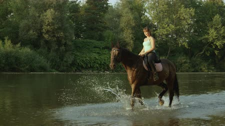 borrifar : SLOW MOTION, CLOSE UP, DOF: Beautiful young horse girl riding powerful brown stallion in shallow water along rocky riverbank. Muscular dark bay gelding enjoying ride in refreshing river on sunny morning