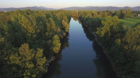 zarostlý : AERIAL: Flying above quiet green river with glassy surface reflecting lush riverbank trees with overgrown hills in the background on early sunny evening. Beautiful nature scenery with flowing course Dostupné videozáznamy