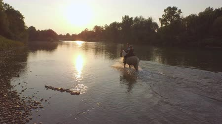 kleštěnec : AERIAL, CLOSE UP: Flying around two female riders riding horses along lush overgrown riverbank into magical golden sunset. Young girls on palomino and dark brown horse hanging out at stunning morning
