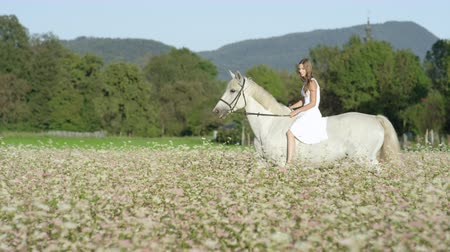 lóháton : SLOW MOTION CLOSE UP DOF: Beautiful girl in white dress bareback riding stunning grey horse through dense pink flowering field. Pretty young happy girl on ride with mighty white stallion in nature