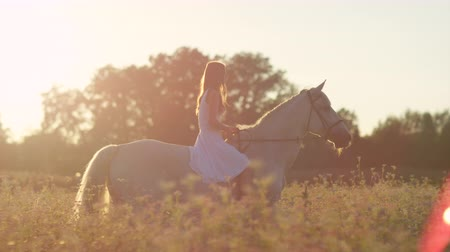 grano saraceno : SLOW MOTION, CLOSE UP: Pretty girl in white dress bareback riding stunning horse through dense flowering field on magical golden light sunset. Young happy girl on ride with mighty stallion at sunrise