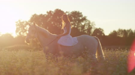 trigo sarraceno : SLOW MOTION, CLOSE UP: Pretty girl in white dress bareback riding stunning horse through dense flowering field on magical golden light sunset. Young happy girl on ride with mighty stallion at sunrise