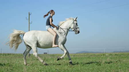 galope : SLOW MOTION, CLOSE UP: Cheerful young girl bareback riding and cantering fast on vast meadow field on stunning sunny summer day in countryside. Smiling girl enjoying her time with beautiful white mare Vídeos