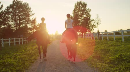 koń : SLOW MOTION, CLOSE UP: Two young girls horseback riding amazing brown stallions walking along sandy footpath into magical golden sunset on big horse ranch farm. Friends on morning ride at sunrise