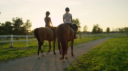 ruin : SLOW MOTION, CLOSE UP: Two young girls horseback riding amazing strong brown stallions walking into magical golden sunset on beautiful horse ranch farm. Girlfriends on relaxing morning ride at sunrise Stockvideo