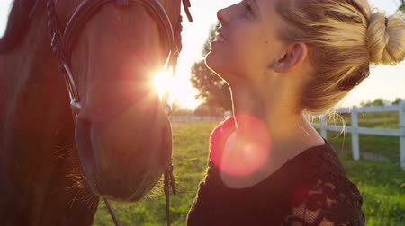 herélt ló : SLOW MOTION, CLOSE UP: Cute young girl kissing, caressing and petting her strong dark brown stallion on horse ranch farm on amazing sunny summer day. Devoted female rider creating love and partnership