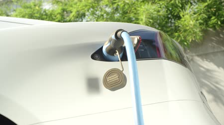 bilinçli : CLOSE UP: Luxury Tesla electric car charging battery cells at home in the yard. Expensive white electrical car recharging. Environmentally conscious transportation vehicle plugged in, refilling