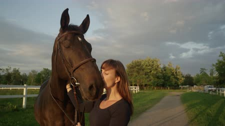 kleštěnec : SLOW MOTION CLOSE UP: Beautiful female rider kissing and petting adorable powerful dark brown horse on stunning sunny evening. Brunette girl enjoying her summertime horseback riding vacation in nature