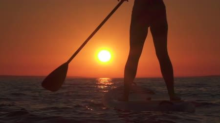 sup : SLOW MOTION, CLOSE UP: Woman standing firmly on inflatable SUP board and paddling. Hands pushing and pulling the paddle through the water and propelling paddleboard at breathtaking golden sunset