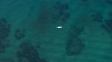 sup : AERIAL: Flying above woman in pink bikini standup paddleboarding on blue inflatable SUP board. Sunlight penetrating through crystal clear ocean water surface and shining on rocky and sandy sea bottom