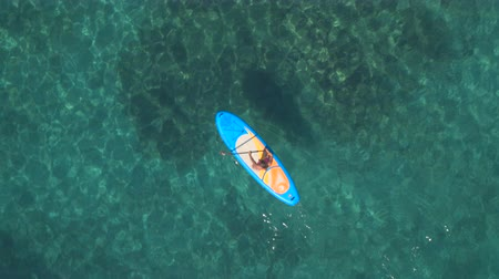 sup : AERIAL: Flying above pretty girl rider standup paddleboarding in beautiful crystal clear turquoise tropical sea. Sun rays penetrating transparent water revealing stunning rocky, stony and sandy seabed
