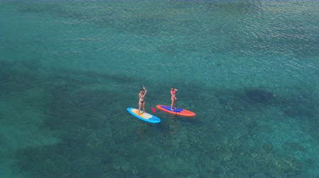 доска для серфинга : AERIAL: Flying around 2 girls hanging out and supping in stunning crystal clear tropical ocean on hot sunny summer day. Sun rays penetrating water surface revealing amazing rocky and sandy seabed Стоковые видеозаписи