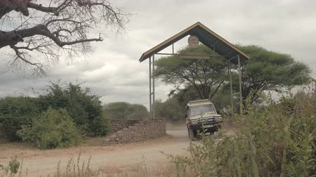 akát : TARANGIRE, TANZANIA - JUNE 10, 2016: Safari jeep driving happy tourists through the safari park entrance gate and going on amazing game drive tour in stunning wildlife Tarangire National Park, Africa