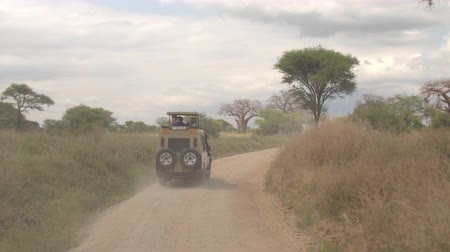 zaprášený : TARANGIRE, TANZANIA - JUNE 10, 2016: Maintenance truck passing safari jeep game driving tourists through beautiful arid African woodland with reach vegetation, mighty baobabs, lush green acacia trees Dostupné videozáznamy