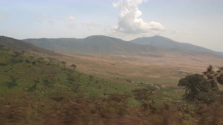 foothills : AERIAL: Overlooking dense green mountains overgrown with acacia trees and lush plants with beautiful maasai village and traditional circular bomba houses at foothill in the valley of Ngorongoro Crater