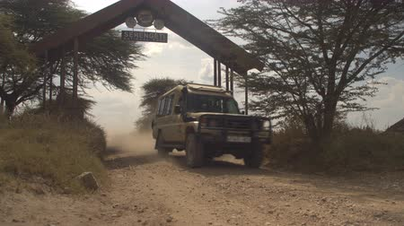 zaprášený : SERENGETI, TANZANIA - JUNE 10, 2016: All terrain safari jeep starting a game drive and driving tourists along the dusty road leading through Serengeti National Park gate in Tanzania, Africa Dostupné videozáznamy
