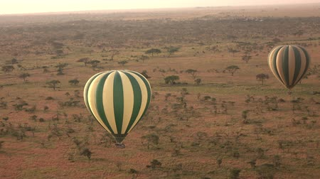 akát : AERIAL: Safari hot air balloon flying above endless savannah plains rolling into the distance in stunning Serengeti National Park. Tourists sightseeing, enjoying African wildlife wilderness at dawn