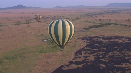 landing field : AERIAL: Safari hot air balloon descending, landing on burned savannah grassland field in Serengeti National Park at purple light dawn. Tourists traveling through air in African wilderness at sunrise Stock Footage