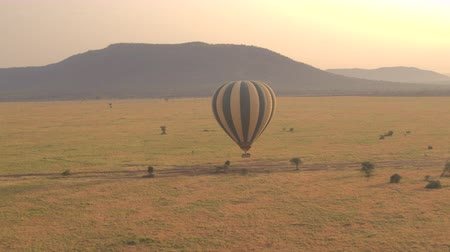 Танзания : AERIAL: Safari hot air balloon full of tourists flying close above the ground. Magical African scenery, savannah short grass field and overgrown mountains in distance on stunning golden light morning