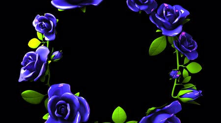 šik : Blue roses frame on black text space.3DCG rendering animation that can loop. Dostupné videozáznamy