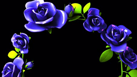 koszorú : Blue roses frame on black text space.3DCG rendering animation that can loop. Stock mozgókép