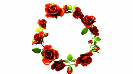 espaço de texto : Red roses frame on white text space Stock Footage