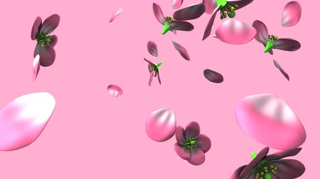 derűs : Pink flowers on pink background.Loop able 3D render animation.