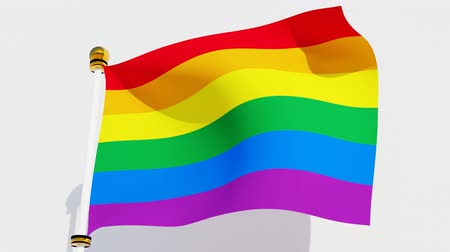 Waving Rainbow Pride Flag. Symbol flag of LGBT,gender and sexual diversity.