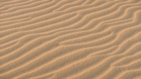 taneli : close up of sand dunes pattern texture in desert.